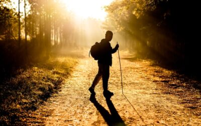 10 ways to keep your daily walk fresh during National Walking Month